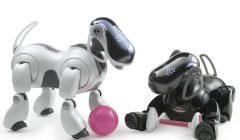 sony aibo perro robot 240x140 - Sony planea volver a lanzar su perro robot Aibo