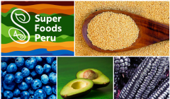 super foods peru 20 240x140 - Perú sera sede del Global Gap Summit 2018