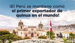 superalimentos peruanos quinua