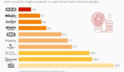 supermarket usa statista 248x144 - ¿Qué supermercados están reduciendo el uso de plásticos en Estados Unidos?