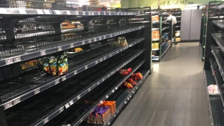 Descubre cómo se vería un supermercado si no existieran insectos