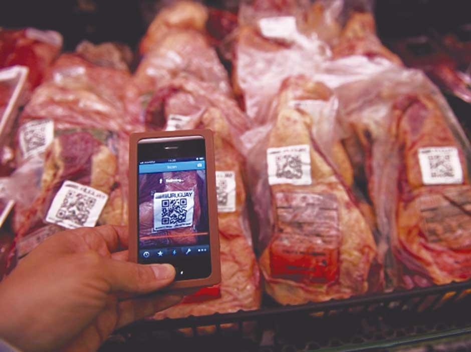 Perú: El blockchain abriría un nuevo mercado nacional de carne de cuy