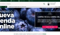 vivanda-online-2017